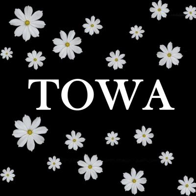 Ажурные клеёнки TOWA